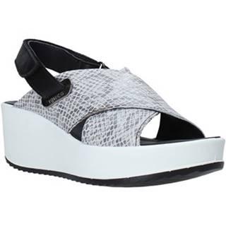 Sandále IgI CO  5178400