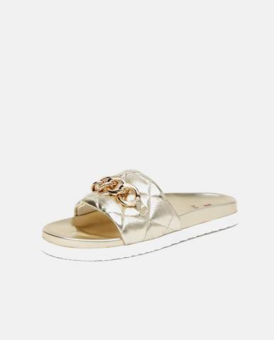 Zlaté papuče Högl