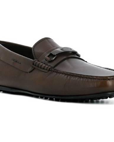Hnedé topánky Tod's