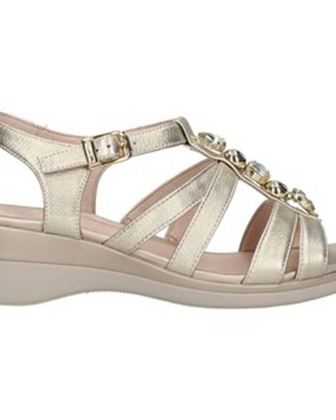 Zlaté topánky Stonefly