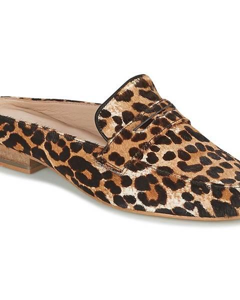 Hnedé topánky Maruti